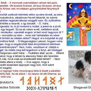 Dharma kutya... :-)